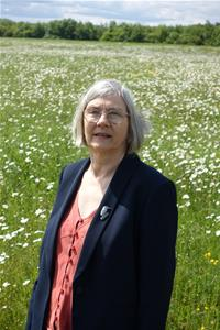 Profile image for Cllr Hazel Smith